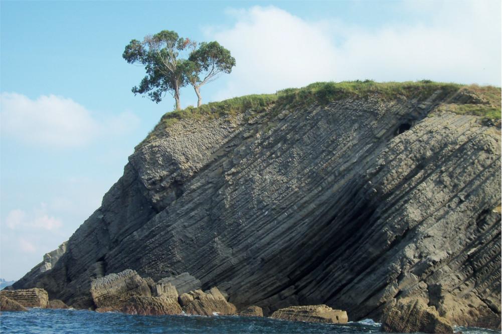 Eucaliptos asomados al acantilado, a 5 km de Posada Rosalia.